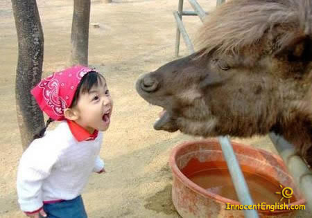 little girl makes face at horse