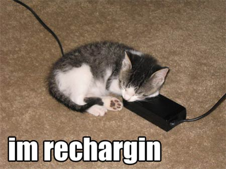 I\'m recharging: Cute kitten sleeping lol cat