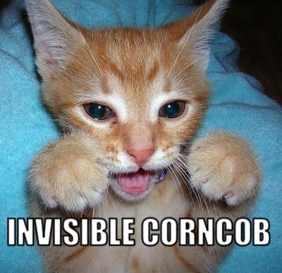 Invisible lolcat corncob