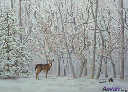 forest deer illusion