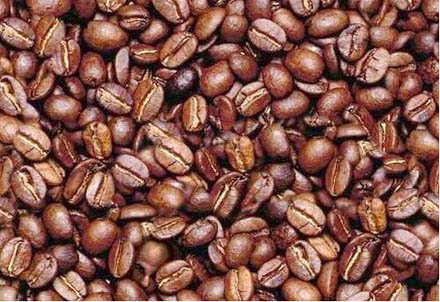 optical illusion 15 there is a hidden face within the beans how
