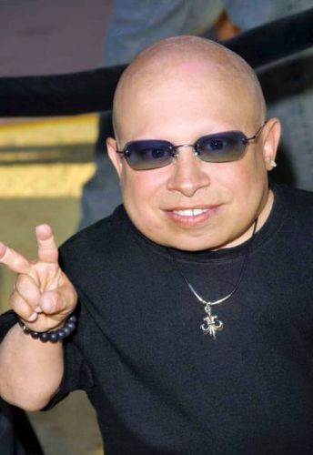 Verne Troyer facts