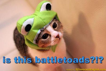 battletoads-kitty-pic