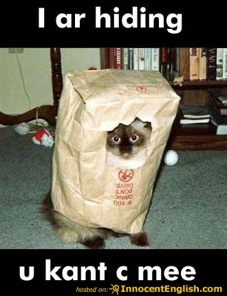 cat-hiding-in-paper-bag