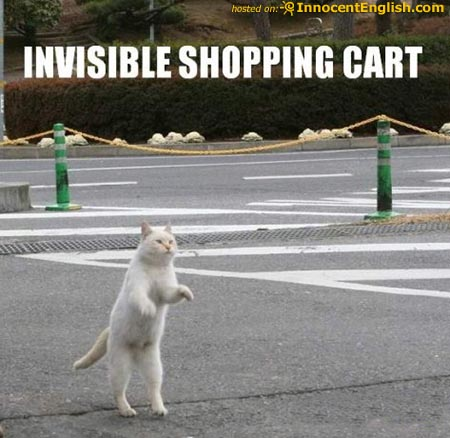 cat-pushing-invisible-shoppingcart