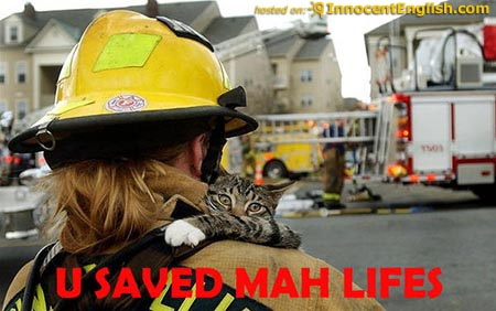 cat-saved-from-danger