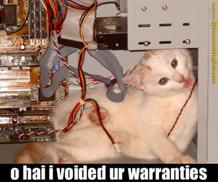 cat-voided-warranties